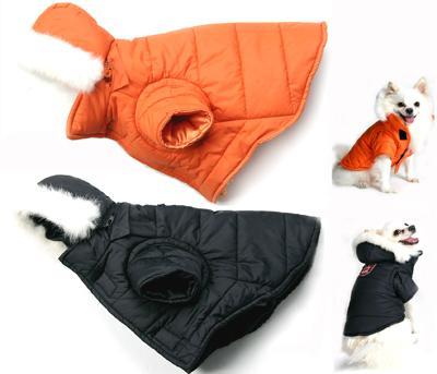 Одежда и акссесуары для собак